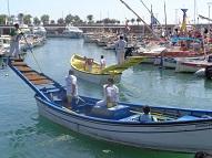 Joute des pêcheurs dans  le port de Saint-Raphael