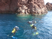 Diving just off the coast at Port Santa Lucia
