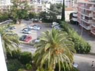 View from the balcony over palm trees and a local public parking